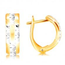 Orecchini in oro 14K - arco opaco con linee brillanti in oro bianco