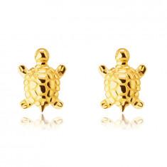 Orecchini in oro giallo 375, a bottone - tartaruga con armatura incisa